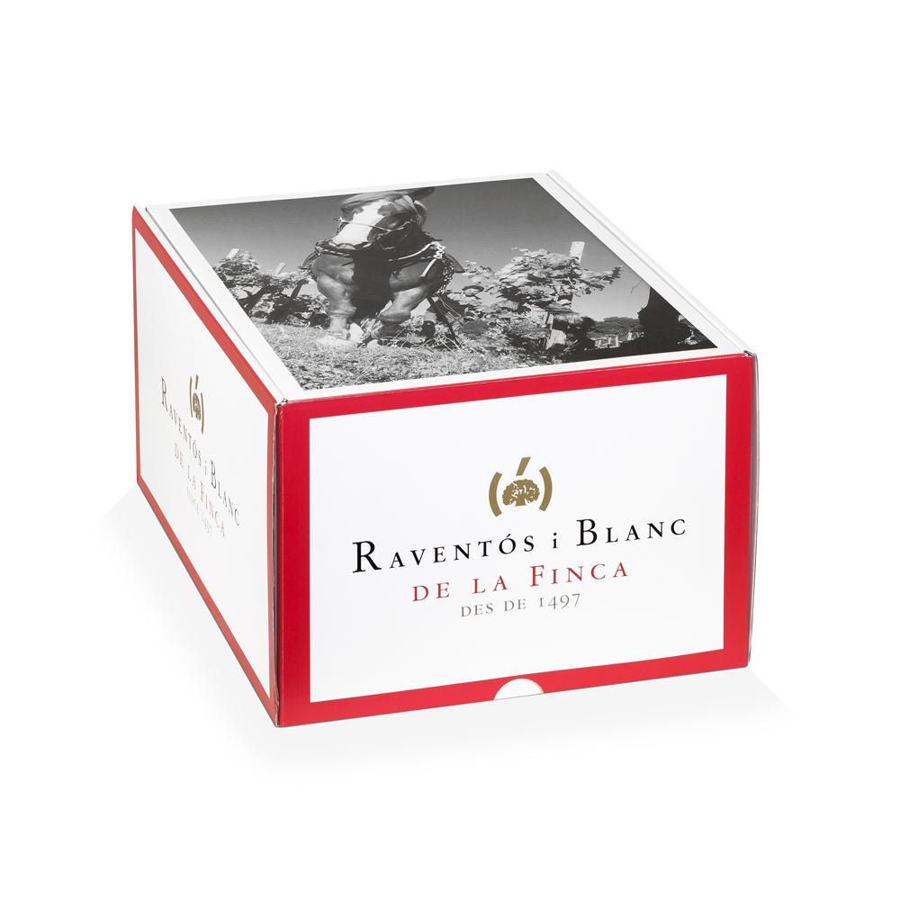 Caja embalaje 12 botellas vino con rejilla