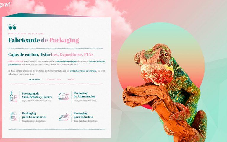 Nueva web de GRAFICAS DIGRAF